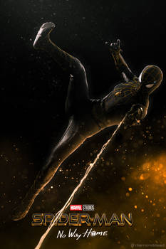 Spider-Man: No Way Home - Black and Gold Suit