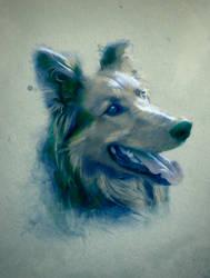 Dog by sirpsychosexy8