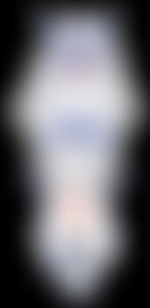 NorthNixon Persona NIX