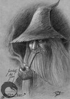 .:Gandalf the Grey:. by oribi
