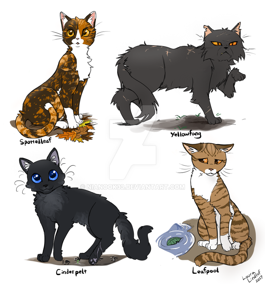 Thunderclan Medicine Cats By NiaNook33 On DeviantArt