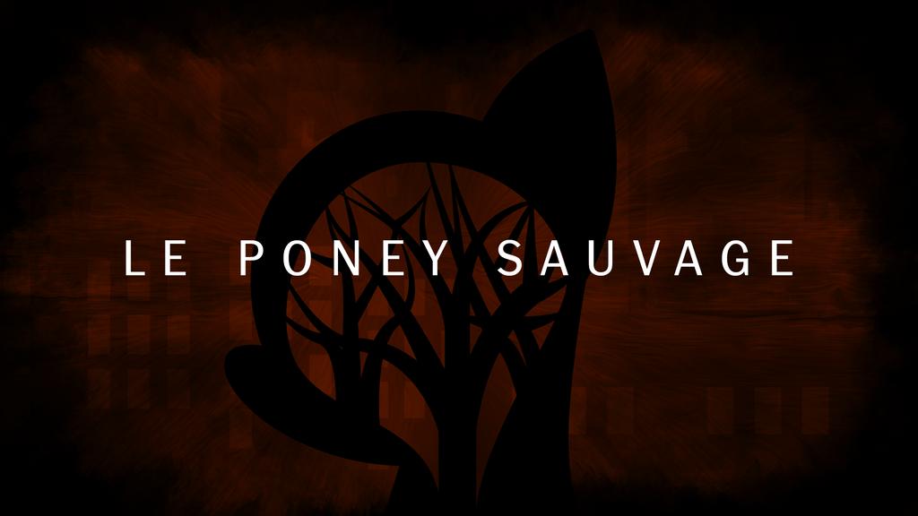 Le Poney Sauvage - Wallpaper by TheDarkSatanicorn