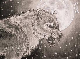 Inktober #7   Werewolf   ACEO by silverybeast