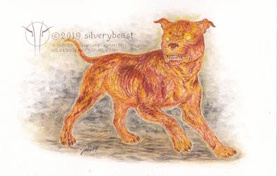 Hellhound by silverybeast