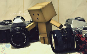 danbo and cameras by iamkimji