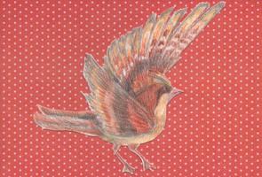 Little birdie by Jenniej92