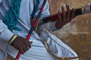 Chikara String Instrument - clicked by Isha Trived