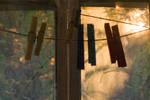 Sun's clothespins