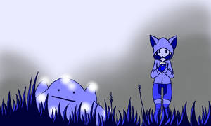 Shiny Hunt -revisited-