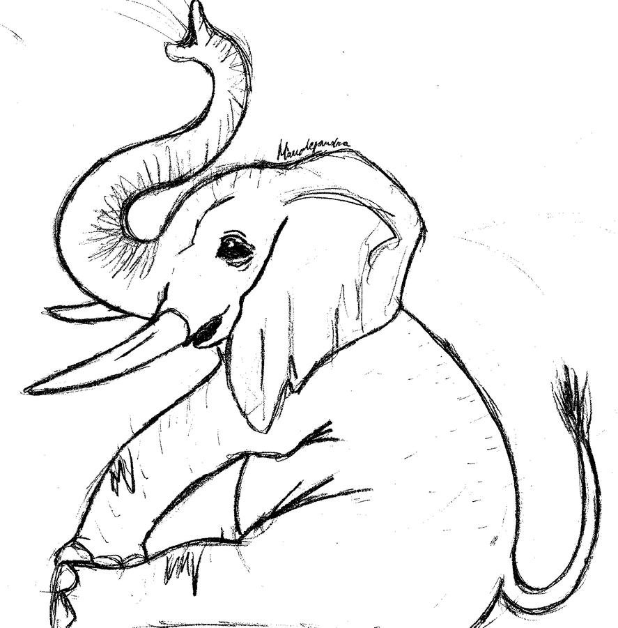 Line Drawings Of Baby Animals : Baby elephant line drawing