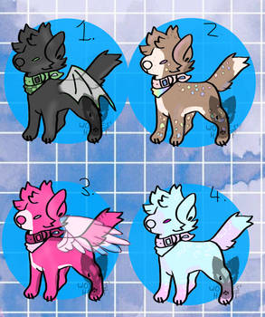Cheap Canine Adopts (4/4 open)