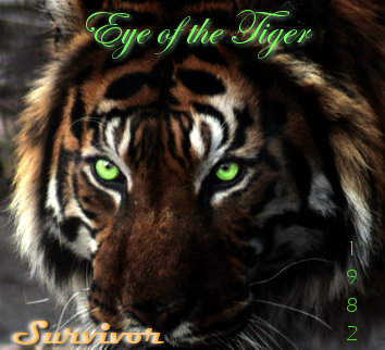 eye of the tiger album cover by silverstorm designs on deviantart. Black Bedroom Furniture Sets. Home Design Ideas