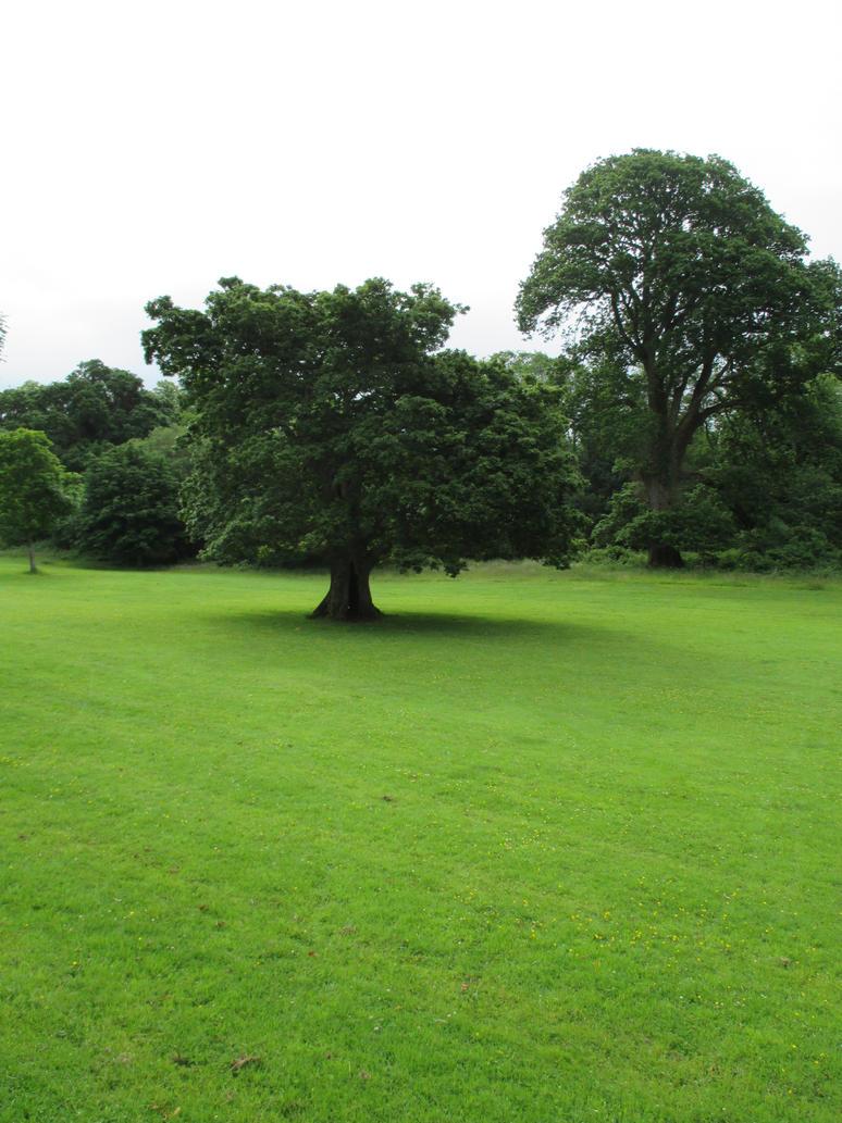 Irish Landscape 19 By Silverstorm Designs On Deviantart