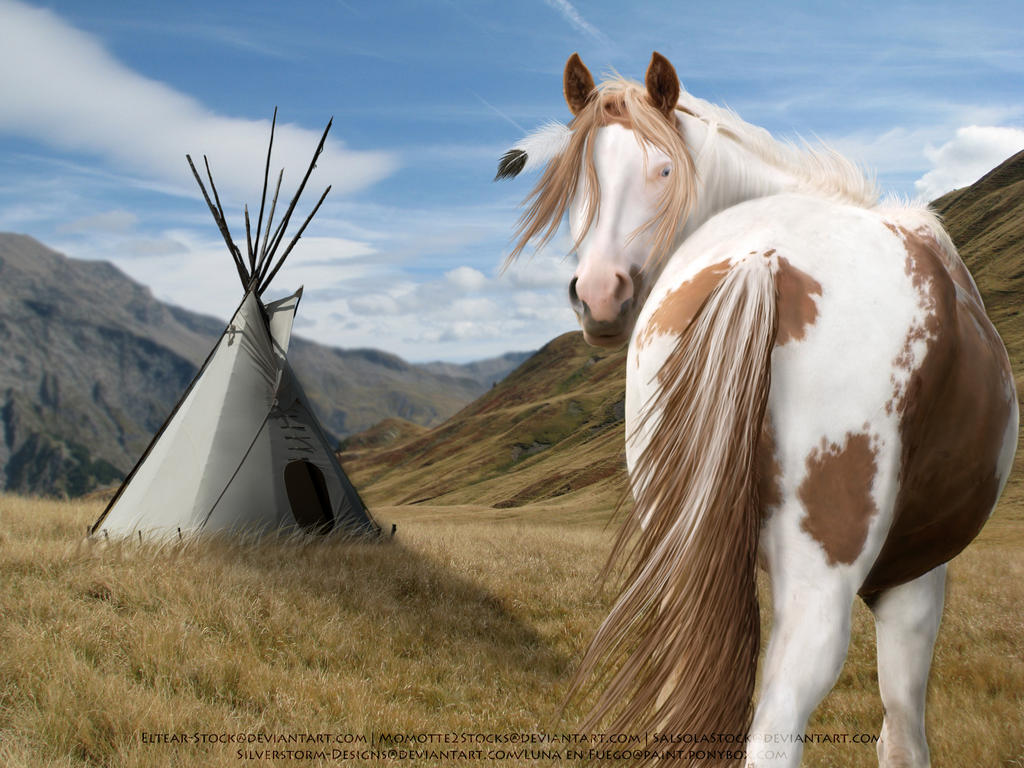 Native American Painted Horse Native American Paint by