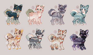 [ OPEN 1/6 ] adopts auction