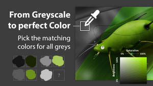 Youtube Tutorial: From Greyscale to perfect color
