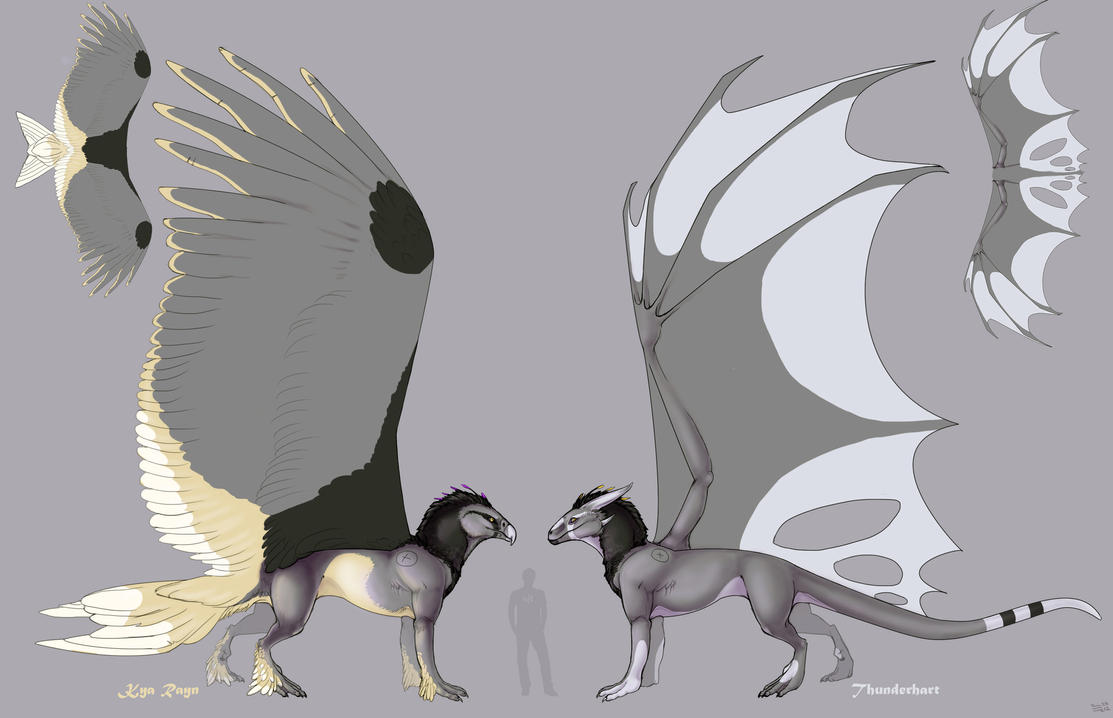 Kya Rayn / Thunderhart ref sheet by NorthSkyThunder