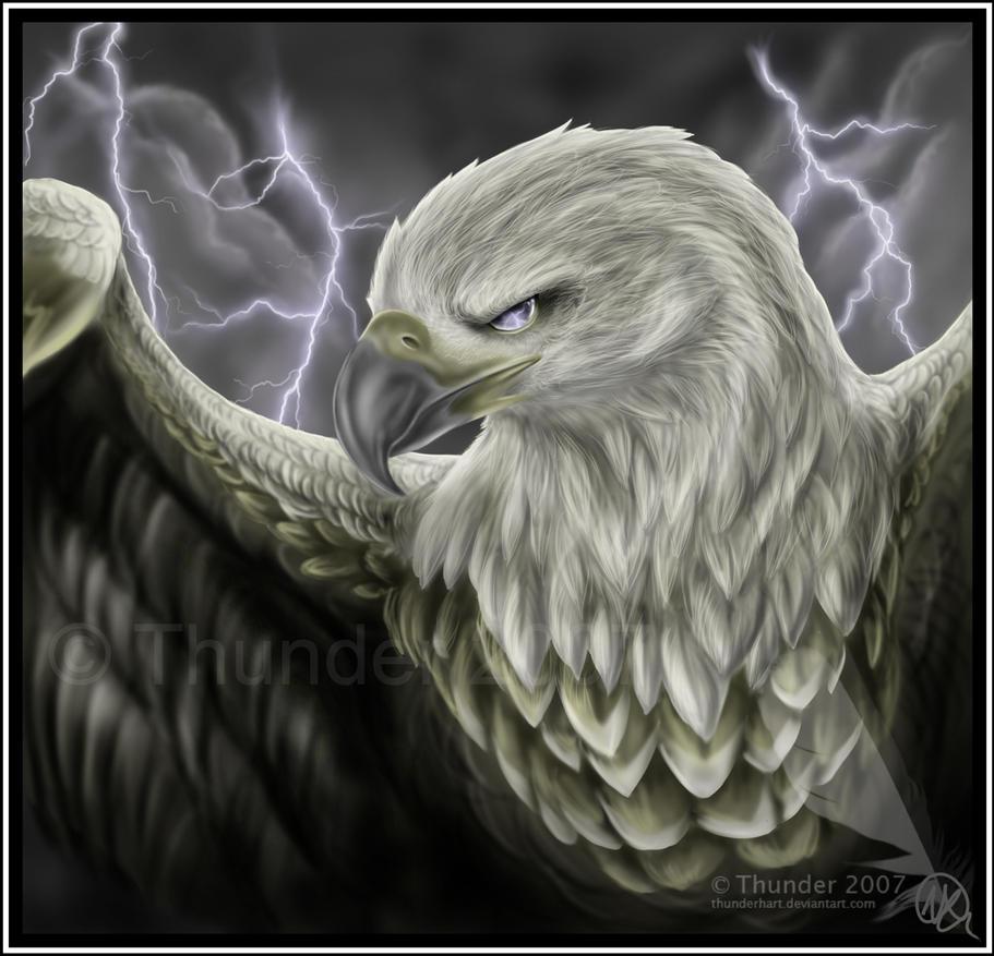 [Image: thunderhawk_by_thunder_hart-d5i97gj.jpg]