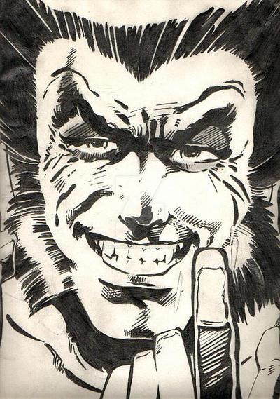 Wolverine by Felix-Alvarez