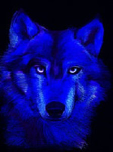 BlueWolfDreaming's Profile Picture