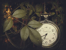 wonderland time by AndreaChapman