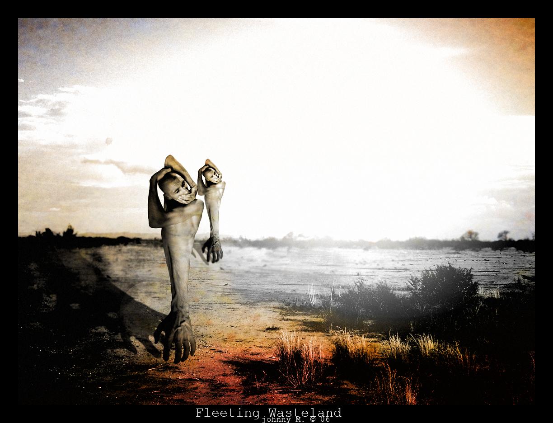 Dreamscape: Fleeting Wasteland by JohnnyMalkavius