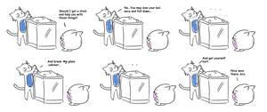 Fat Cat Diary 47