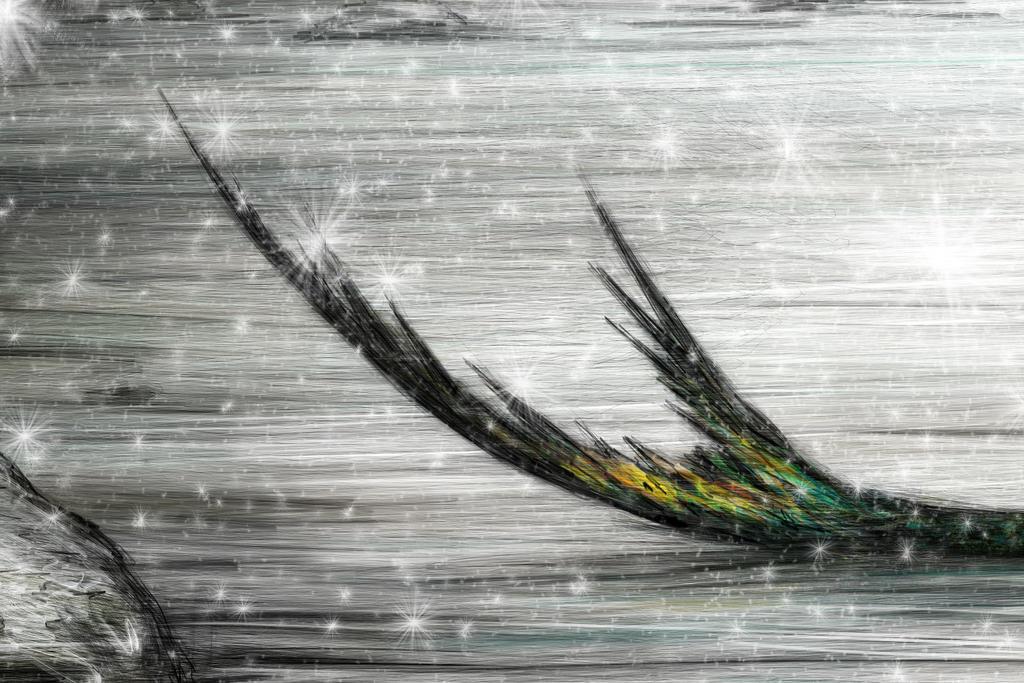 Winter-Mermaid-Justin-Gedak-4 by JustinGedak