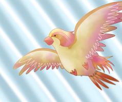 Pidgeot by ice-cream-skies