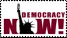Democracy Now by DragonQuestWes
