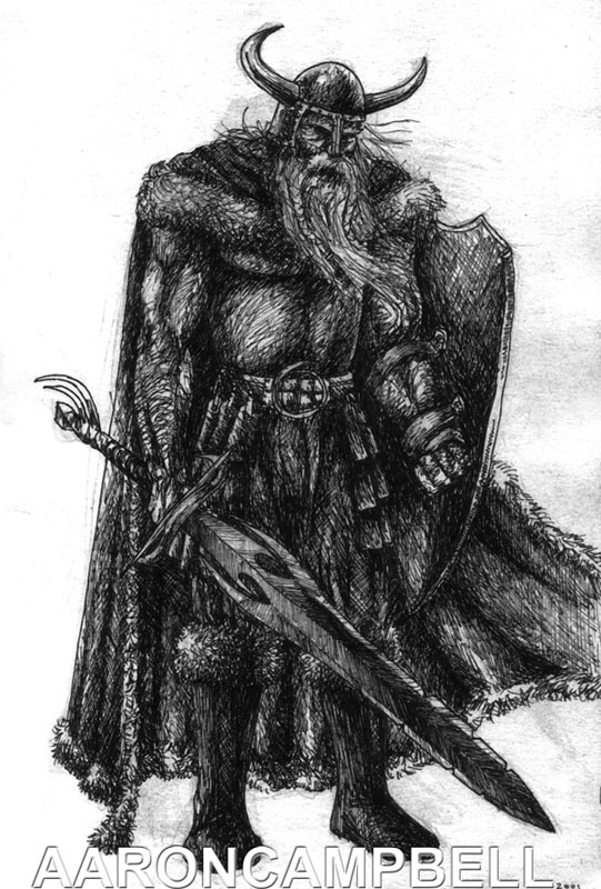 Viking by littleac