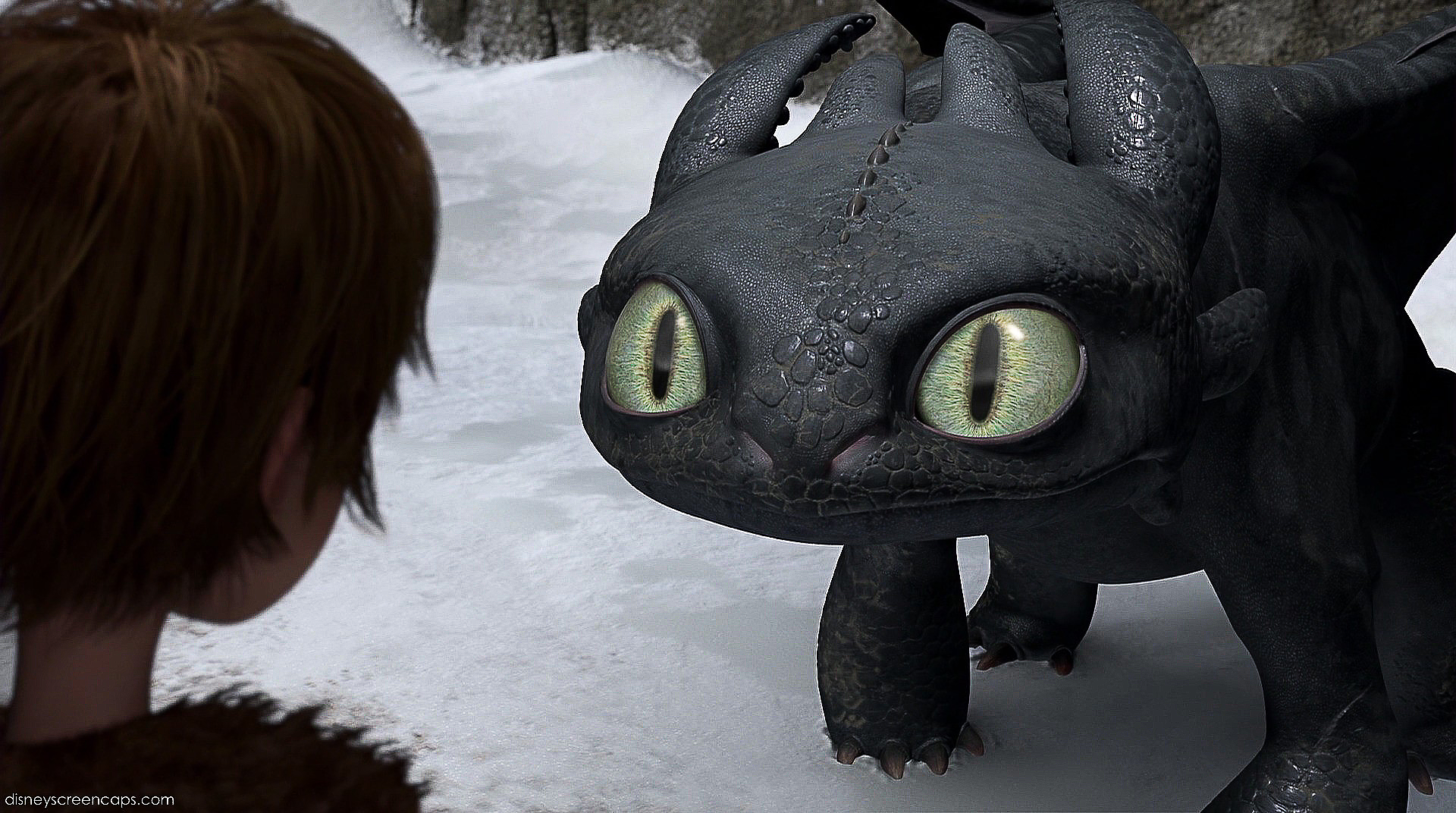Gift of the night fury toothless