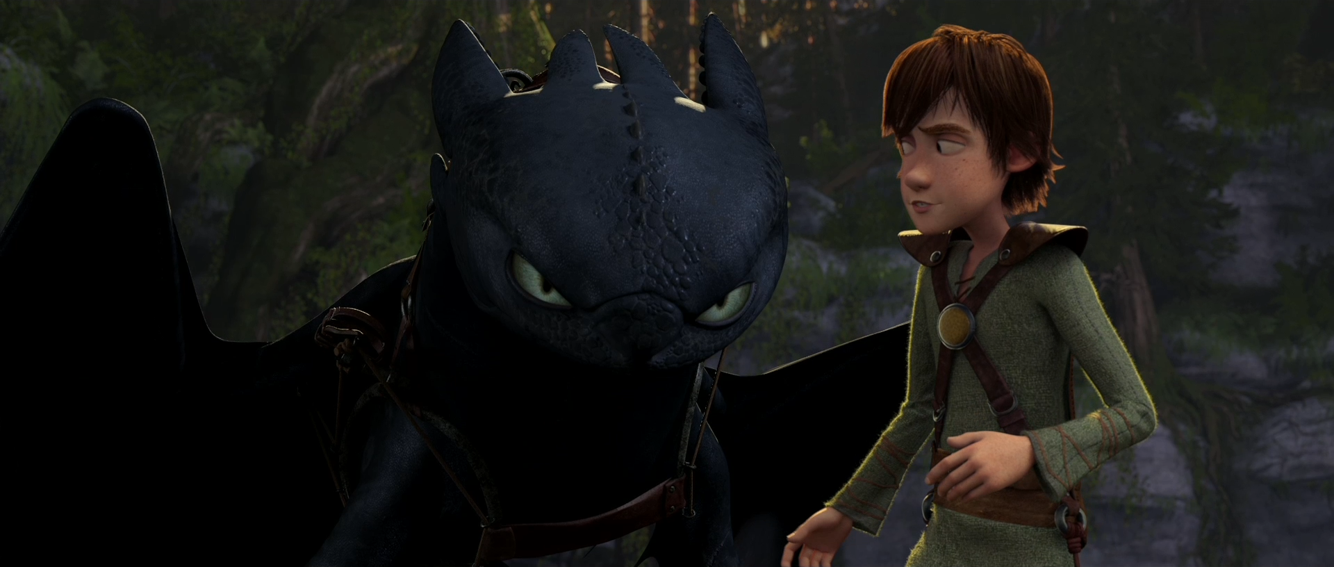 How to train your dragon toothless hiccup by dashiesparkle on