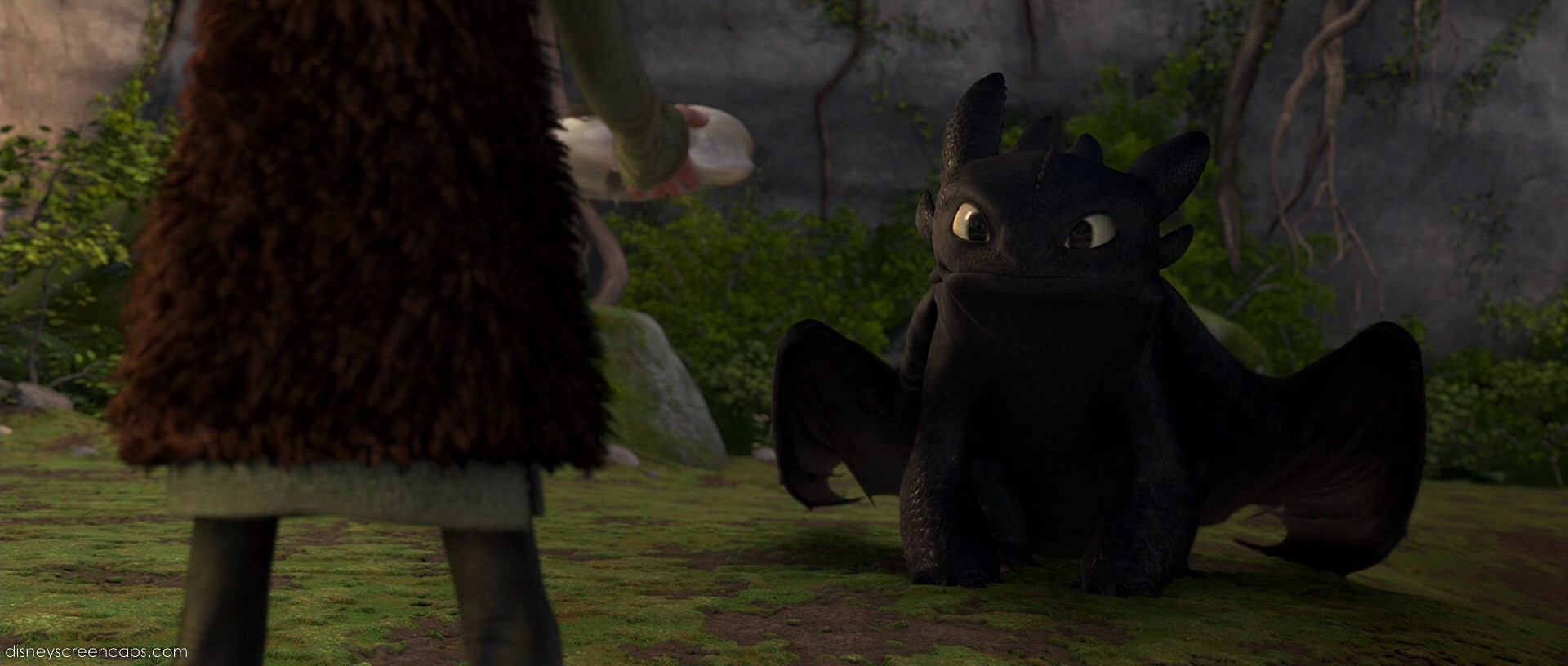 pictures of toothless from how to train your dragon 2