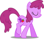 Vector #342 - Berry Punch #3
