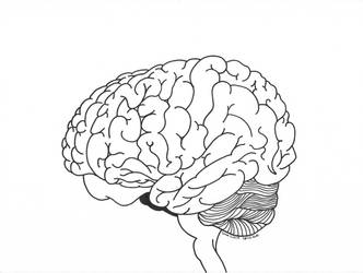 Brain Lineart - 26/12/2017 by sacerludum