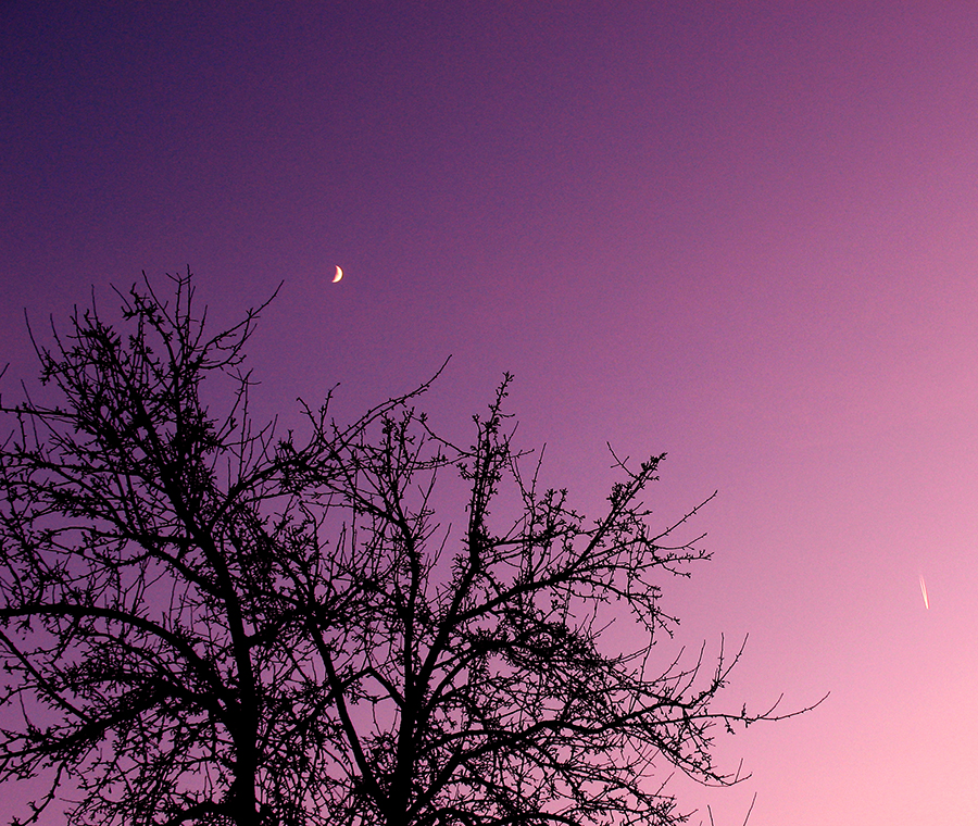 Rocketing to the Sky by ausrejurke