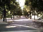 Debreceni Nagyerdo 2014 #7