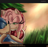 SonAmy: Show me how much you love me Ames. by sonamy94fan