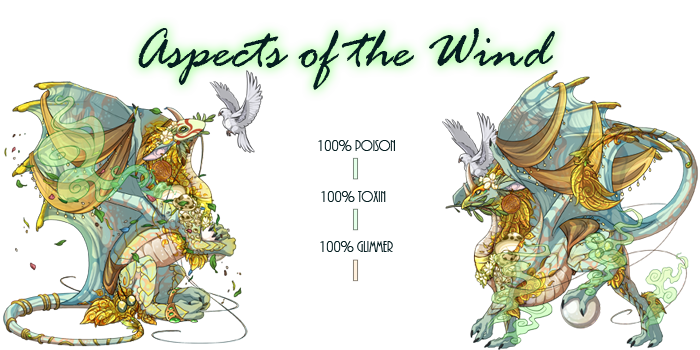 aspects_of_the_wind_by_thalbachin-dazgysv.png