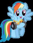 Rainbow Dash gift vector.