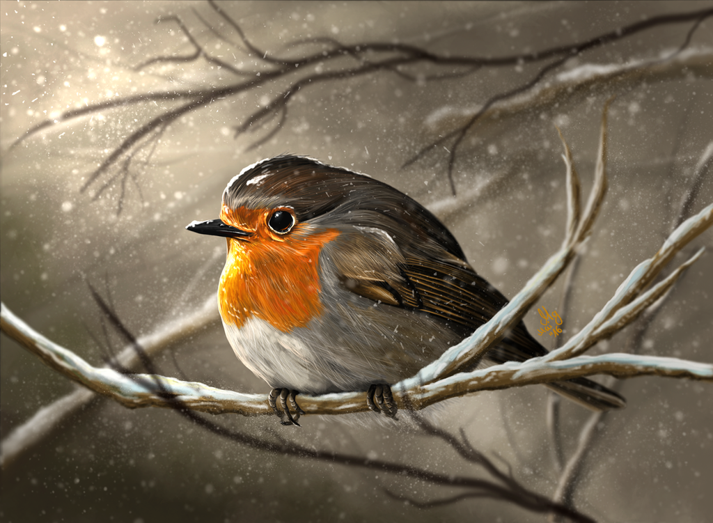 Robin by ColorstainedRaven
