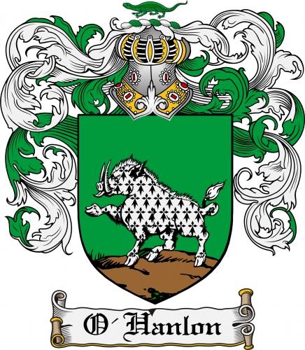 OHanlon Family Coat Of Arms By KendraKickz0220