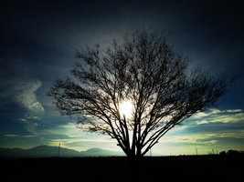 Smoke Signal by SharPhotography