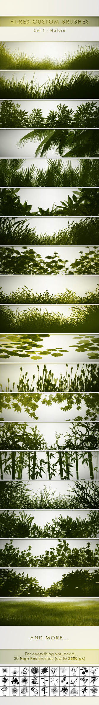 30 Hi-Res Custom Brushes - Nature by PrismaDesign