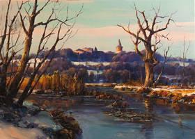Winter Swamp by VityaR83