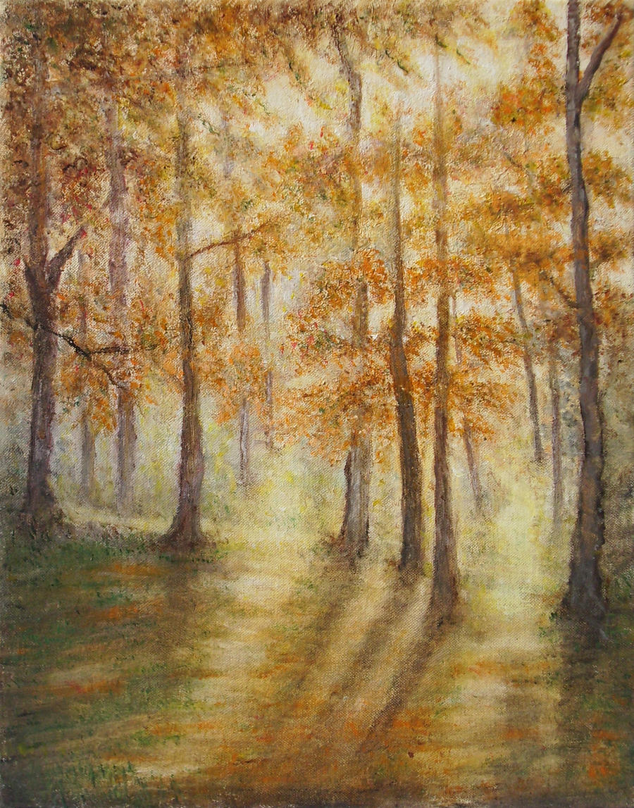Forest lights by Kolorita
