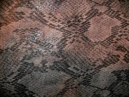 Snake Skin-1 by Rubyfire14-Stock