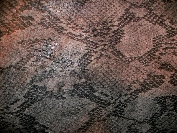 Snake Skin-1