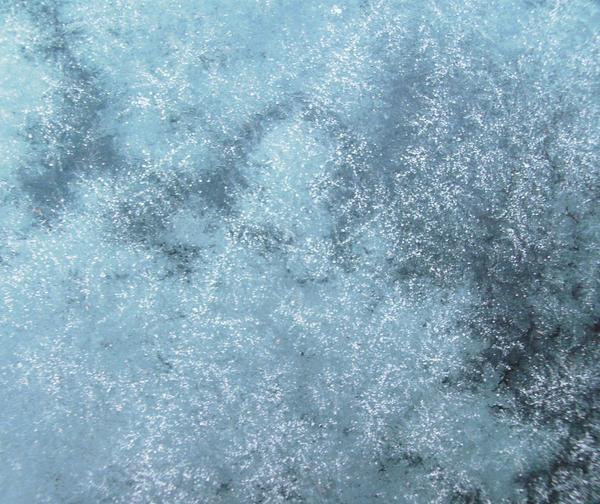 Frost by Rubyfire14-Stock on DeviantArt